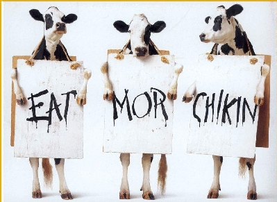 eat-more-chicken.jpg